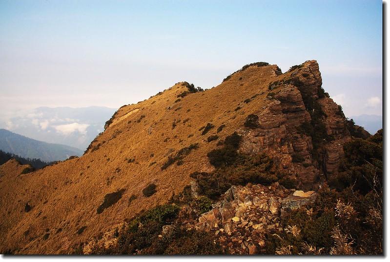 玉山南峰西稜東側草原坡 6