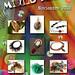 Mixed Media. Ventana al Arte, Noviembre 2013 by Silvia Ortiz de la Torre