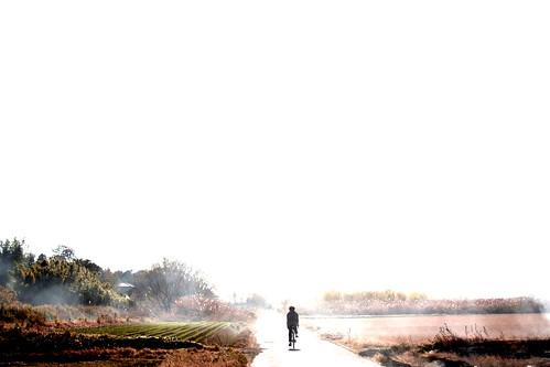 デロリアン自転車