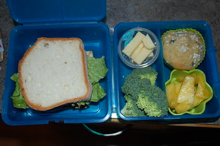 turkey sandwich bento