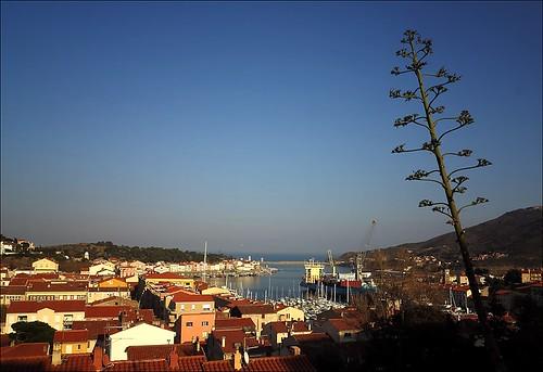 seascape france port sunrise daylight southoffrance mediterranian canong1x pwpartlycloudy portvendreslanguedocrousillon