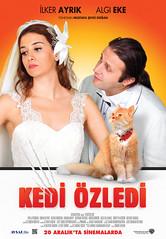 Kedi Özledi (2013)
