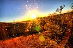 Sunset at Papago