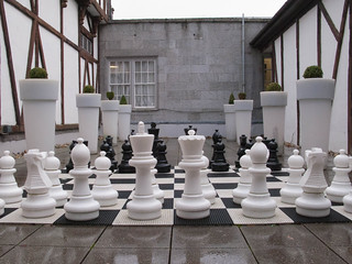 Anyone For Chess?