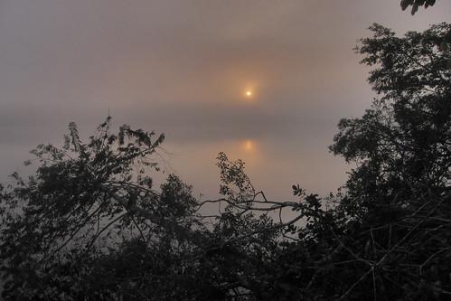 sunrise ecuador napowildlifecenter yasunínationalpark añagucochalake