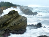 2014 02 21_Bandon Male Bonding_cape arago 1_edited-1.jpg