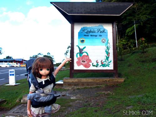 Mt Kinabalu Park