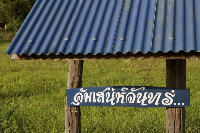 Lettering in the country style (ลูกทุ่ง).