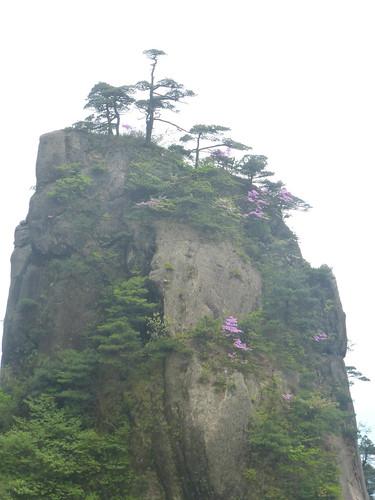 Jiangxi-Sanqing Shan- 2 sentier de l'ouest (53)