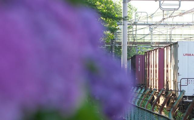 Tokyo Train Story 貨物 2014年6月15日