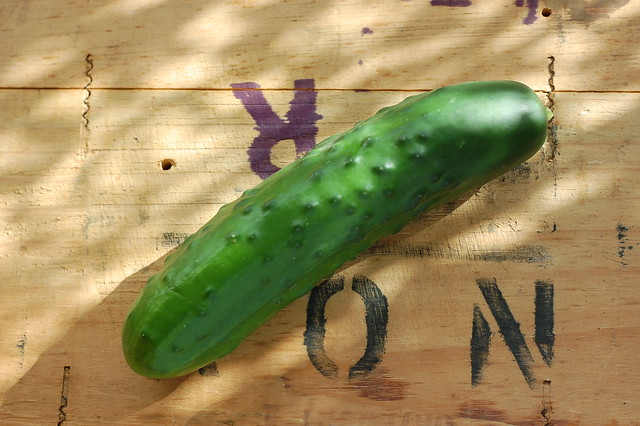 Cucumber displayed on a wooden box
