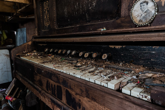 la pianiste, Canon EOS 70D, Sigma 8-16mm f/4.5-5.6 DC HSM