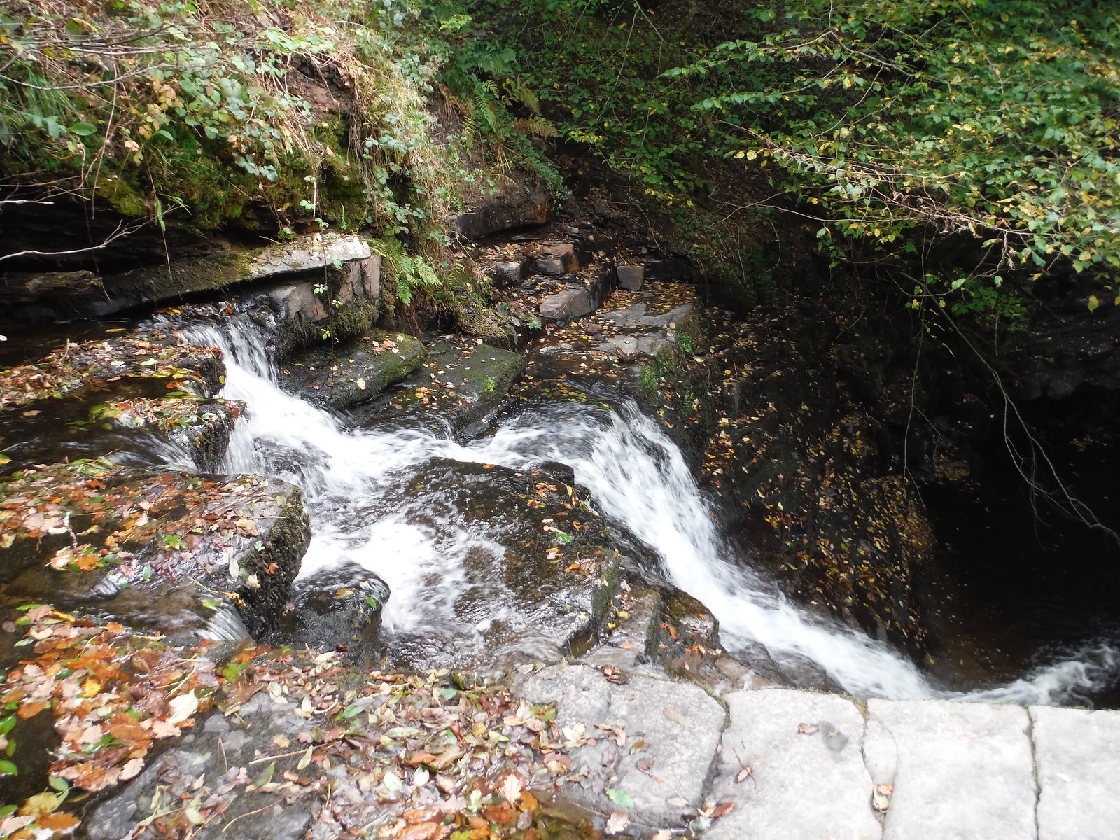 Top of small waterfall on the Nant Llech SWC Walk 280 Henrhyd Falls - Sgwd Henrhyd (Craig y Nos Circular)