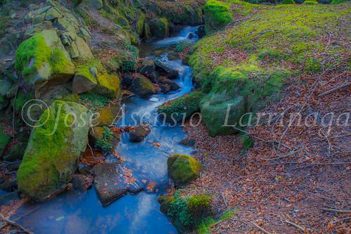 Parque Natural de Gorbeia #DePaseoConLarri #Flickr -2848