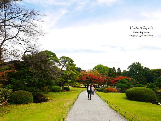 日本東京自由行新宿御苑庭園景點 (31)