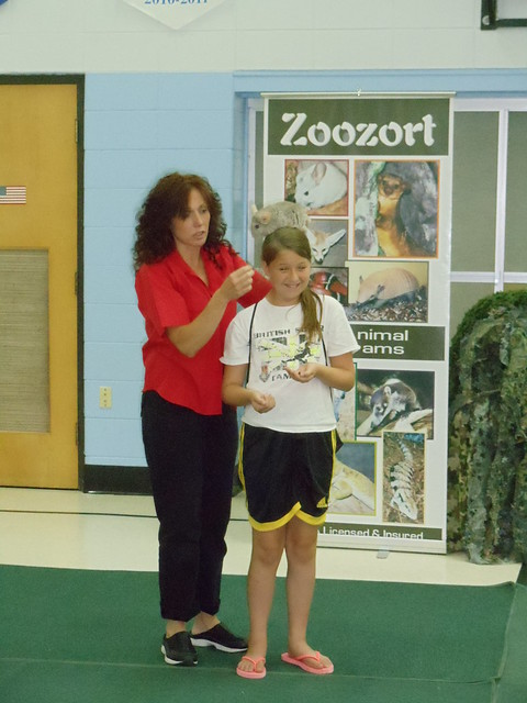 Summer Reading Program with ZooZorts