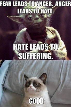 Yoda Grumpy Cat