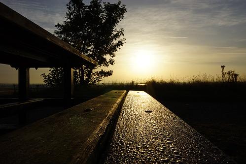 sun sunrise bench dewdrops dew portsmouth southsea picnictable sigma1020mm langstoneharbour a65 miltoncommon happybenchmonday alpha65