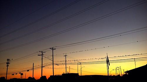 sunset sky colors austin shadows dusk powerlines poles originalfilter uploaded:by=flickrmobile flickriosapp:filter=original