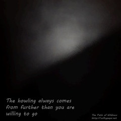 The howling always comes from further than you are willing to go - The Path of Wildness