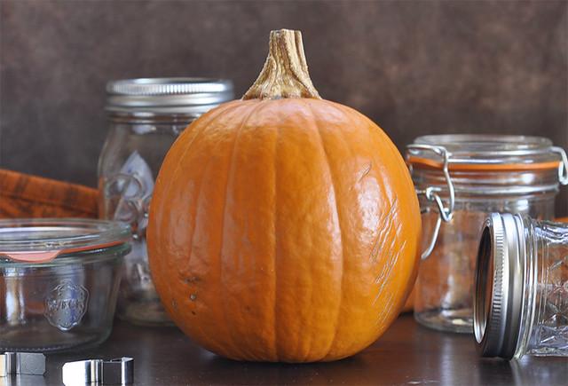 Pumpkin - Pumpkin Mostarda