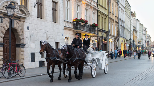 Never Saw One Happy Carriage Driver at Krakow