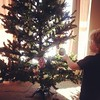 Tree time!  #latergram