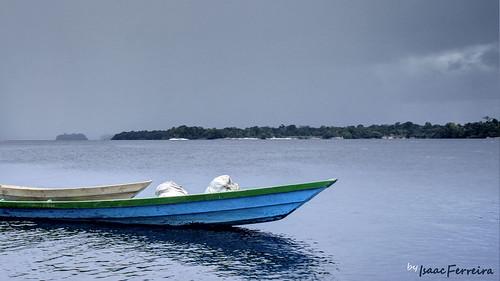 Canôa cegonha (Boat stork)