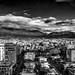 Tirana & Daithi