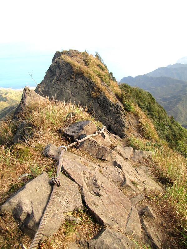 終於爬上半屏山稜線