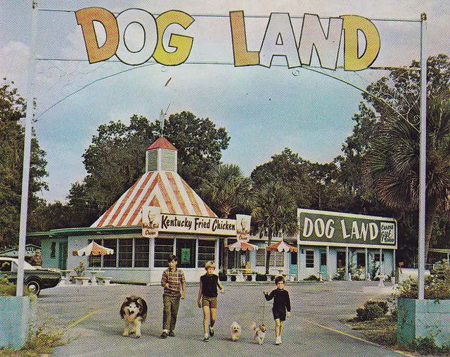DOG LAND Suwannee River Florida
