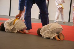 hapkido, individual sports, contact sport, sports, combat sport, martial arts, judo, japanese martial arts, jujutsu, brazilian jiu-jitsu,