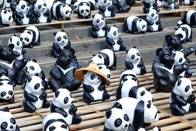 2014 台灣1600貓熊世界之旅(南投站) + 18度C巧克力工房 @強生與小吠的Hyper人蔘~