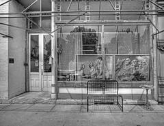 history in the window: john van kirk