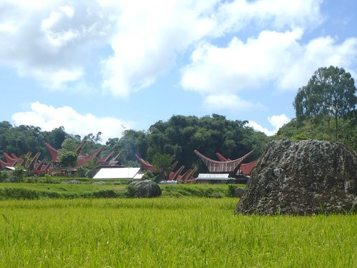 Sulawesi13-Lo'ko Mata-Ke'pa (9)