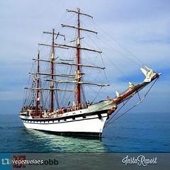 ship of the line(0.0), east indiaman(0.0), fluyt(0.0), carrack(0.0), lugger(0.0), frigate(0.0), galeas(0.0), manila galleon(0.0), caravel(0.0), galleon(0.0), brig(0.0), brigantine(0.0), sail(1.0), sailboat(1.0), sailing ship(1.0), schooner(1.0), vehicle(1.0), ship(1.0), windjammer(1.0), training ship(1.0), full-rigged ship(1.0), mast(1.0), barquentine(1.0), sloop-of-war(1.0), tall ship(1.0), watercraft(1.0), flagship(1.0), boat(1.0), barque(1.0),