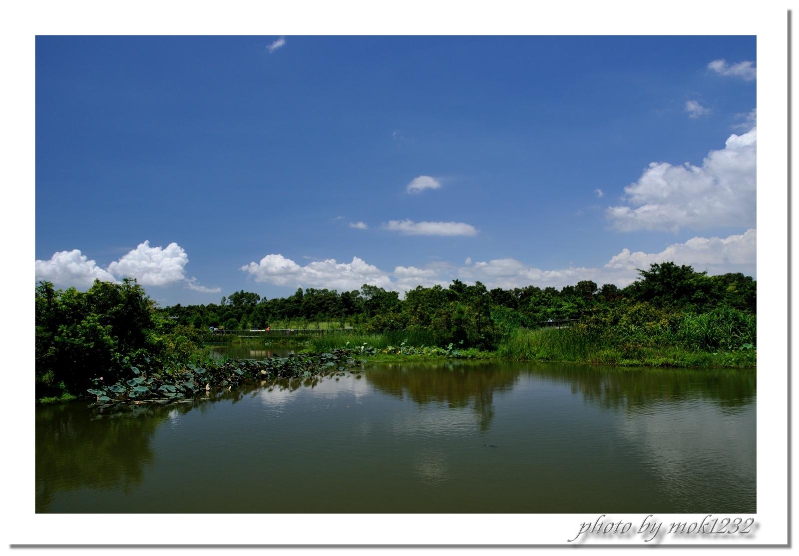 > 湿地公园