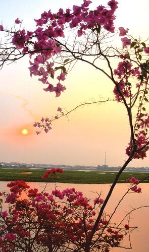 Phnom Penh-Lac Boeng Kak (15)