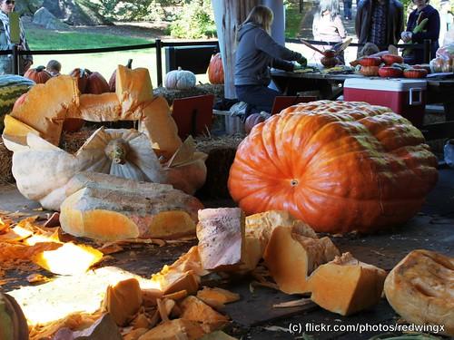 PumpkinParts