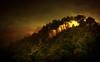 tramonto nel bosco / sundown in the woods