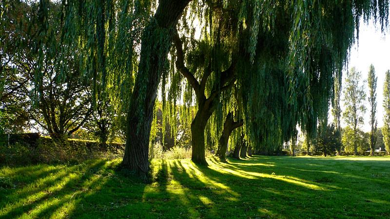 King's Park, Retford