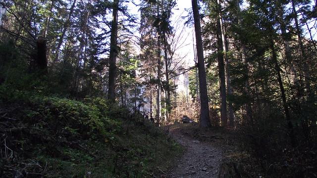 Potecă spre Valea Spumoasă