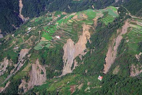 仁愛鄉翠巒部落茶園2006年因豪雨崩塌 (攝影:齊柏林)