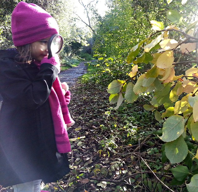 Exploring Nature, summer activities for kids
