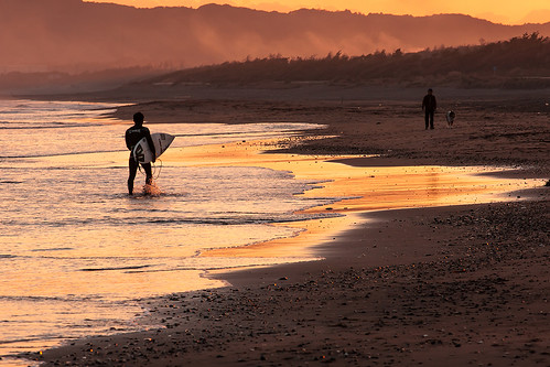 sunset sea dog beach evening surfer surfing minamiboso