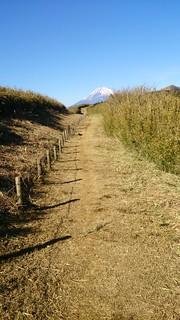 山伏峠近くより富士山