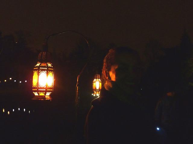 kew-gardens-after-dark-7