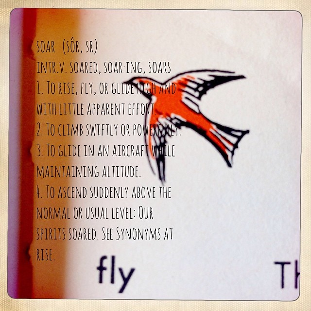 2014's word: soar (sôr, sr) intr.v. soared, soar·ing, soars 1. To rise, fly, or glide high and with little apparent effort. 2. To climb swiftly or powerfully. 3. To glide in an aircraft while maintaining altitude. 4. To ascend suddenly above the normal