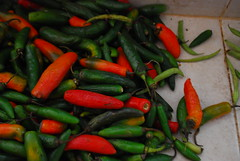 flower(0.0), plant(0.0), cayenne pepper(1.0), chili pepper(1.0), capsicum(1.0), vegetable(1.0), serrano pepper(1.0), tabasco pepper(1.0), peppers(1.0), bell peppers and chili peppers(1.0), bird's eye chili(1.0), peperoncini(1.0), produce(1.0), food(1.0), pimiento(1.0), malagueta pepper(1.0), jalapeã±o(1.0),