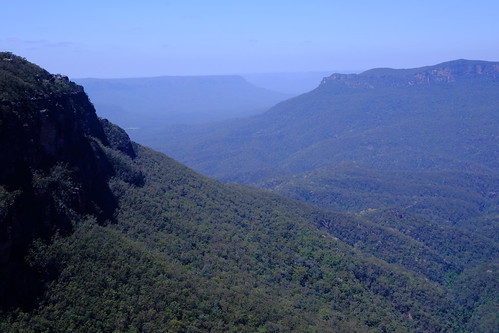 Blue Blue Mountains